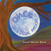 David Nelson Band - Any Naked Eye