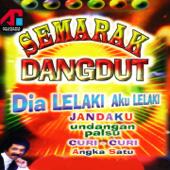 Semarak Dangdut, Vol. 2-Hamdan ATT