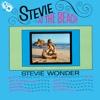Stevie At the Beach, 1964