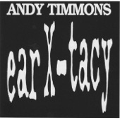 Andy Timmons - I Remember Stevie