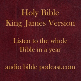 ABP - King James Version - Blended Mix - January Start: Day 135: 1