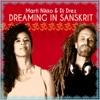 Dreaming in Sanskrit ジャケット写真