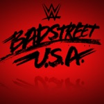 Michael Hayes and the Badstreet Band - WWE: Badstreet U.S.A. (The Fabulous Freebirds)