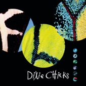 Dixie Chicks - Some Days You Gotta Dance
