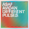 Different Pulses - Asaf Avidan