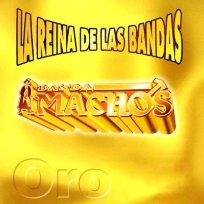 La Reina de las Bandas, Vol. I - Banda Machos