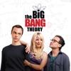 The Big Bang Theory, Season 1 - Synopsis and Reviews