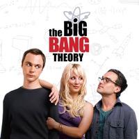 The Big Bang Theory, Season 1 (iTunes)