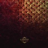 Caspian - Sycamore