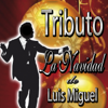 Tributo: La Navidad de Luis Miguel - DCO