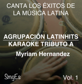Instrumental Karaoke Series: Myriam Hernandez, Vol. 1 (Karaoke Version)