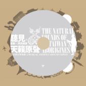 台灣音樂地圖: 聽見。天籟原聲 (音樂×原民美聲)