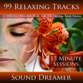 99 Relaxing Tracks (15 Minute Sessions) [For Relaxation, Meditation, Reiki, Yoga, Spa, Massage and Sleep Therapy]