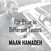 Maan Hamadeh - Für Elise in Different Tastes artwork
