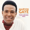 Marvin Gaye: The Albums 1960s ジャケット写真