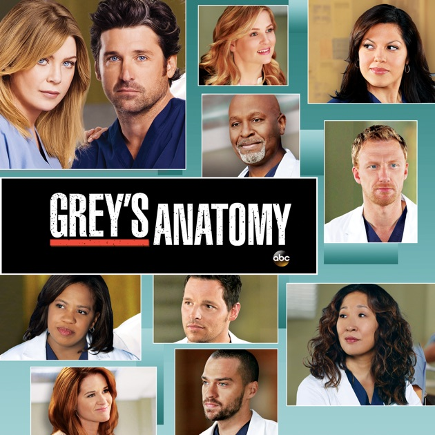 Grey's Anatomy, Season 9 on iTunes