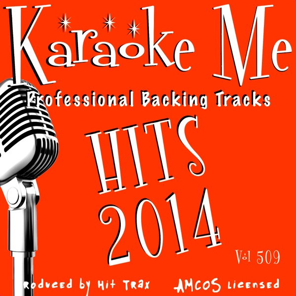 Backing Tracks Hits 2014, Vol. 509 (Backing Tracks)