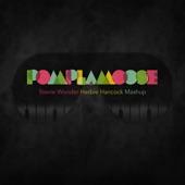 Pomplamoose - Stevie Wonder Herbie Hancock Mashup