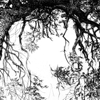 John Haughm - 122012 & 042911 - EP kunstwerk
