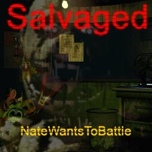 NateWantsToBattle - Salvaged