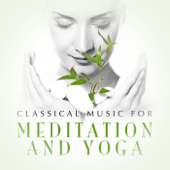 Classical Music For Meditation And Yoga-Various Artists