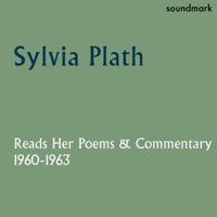 commentary daddy sylvia plath