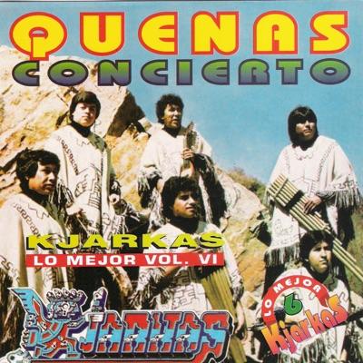 Quenas Concierto: Lo Mejor, Vol. 6 - Los Kjarkas