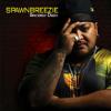 Spawnbreezie - I Swear artwork