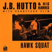 Hawk Squat (feat. Sunnyland Slim)
