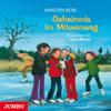 Geheimnis im Möwenweg (Möwenweg 6) - Kirsten Boie