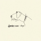 Damien Rice - Dogs