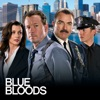 Blue Bloods, Season 4 wiki, synopsis