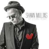 Shawn Mullins - The Great Unknown