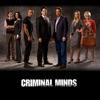 Criminal Minds, Season 3 wiki, synopsis