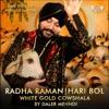 Radha Raman Hari Bol - Single, Daler Mehndi