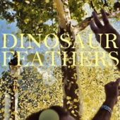 Dinosaur Feathers - Certain Times