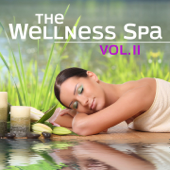 The Wellness Spa, Vol. 2 (Soft Instrumental Piano Music For Meditation, Relaxation, Massage, Stress Relief, Sound Therapy, Healthy Sleep And Sauna)-Various Artists
