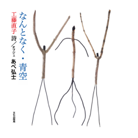 Audio Book Edition, Slightly Blue Sky (Recorded in Japanese): Audio Book Edition, Slightly Blue Sky (Recorded in Japanese) audiobook