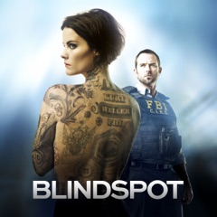 Blindspot, Season 1