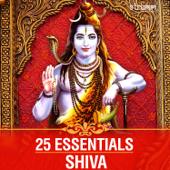 [Download] Om Namah Shivay (Traditional) MP3