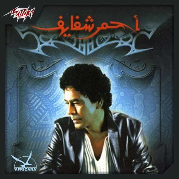 Ahmar Shafaief