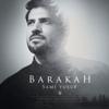 Sami Yusuf - Barakah (Deluxe Version) artwork
