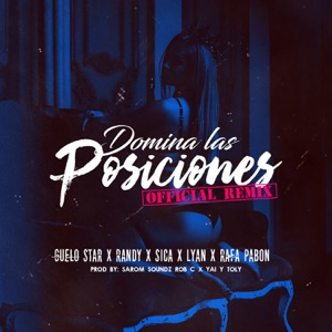 Domina las Posiciones (Remix) [feat. Randy, El Sica, 리안 & Rafa Pabön] - Single Mp3 Download