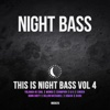 This is Night Bass, Vol. 4 - Various Artists