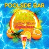 Poolside Bar - Summer Lounge Chillout Music Experience, Pool Party Groove, Relaxation Oasis, Holiday 2016, Chilled Music - Summer Pool Party Chillout Music
