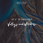 Valleys and Wonders (Live) [Deluxe]