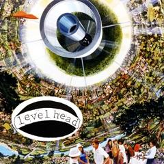 Levelhead LP (feat. Jason Neubert, Brad Neubert & Matt Monroe)