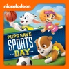 PAW Patrol, Pups Save Sports Day wiki, synopsis