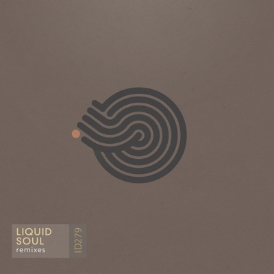 Remixes EP - Liquid Soul album