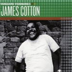 James Cotton - Cut You Loose